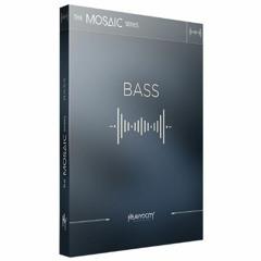 Notorious Pulses (Mosaic Bass, Forzo, Damage 2)