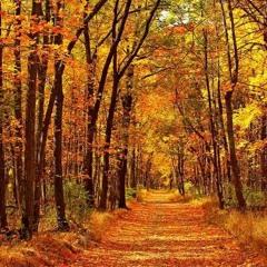 Autumn Tale / Cuento de otoño