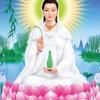 Ai Đang Bất An Khó Ngủ Nghe Lời Phật Dạy 1 Lần NGẤM TẬN XƯƠNG Để Thức Tỉnh Bản Thân Tâm An Ngủ Ngon