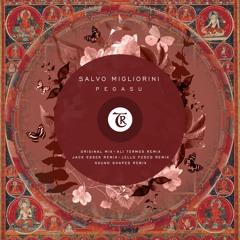 PREMIERE : Salvo Migliorini - Pegasu (Lello Fusco Remix) [Tibetania Records]