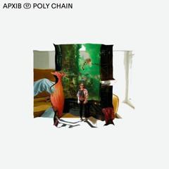 APXIB ⑰ POLY CHAIN