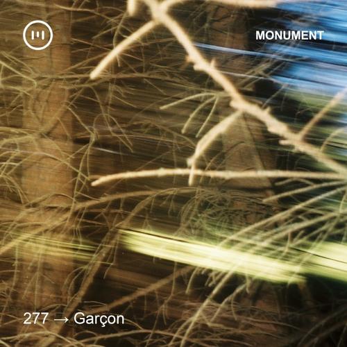 MNMT 277: Garçon