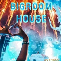 ONLINE FESTIVAL BURN BIGROOM HOUSE MIX 13. BY D3ROADWELL(D3RW)▶