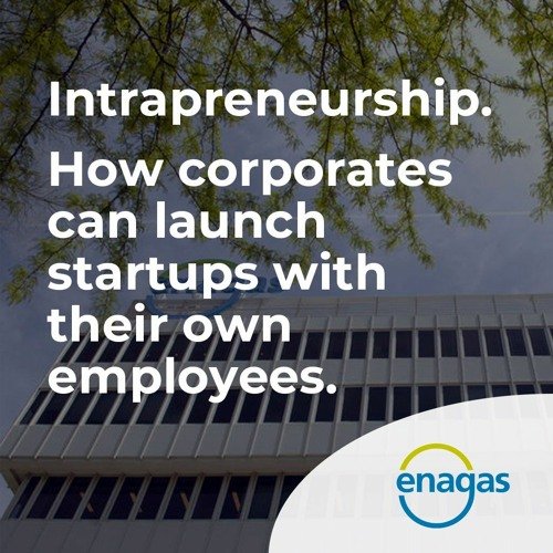 Intrapreneurship. How corporates can launch startups with their own employees.