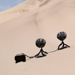 Skeleton Coast - Sand Dune In Moderate Wind