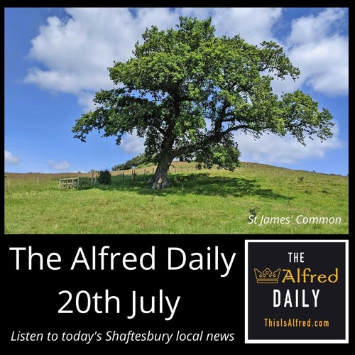 The Alfred Daily - 20th July 2021
