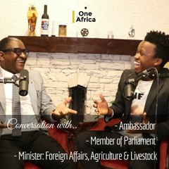 My Conversation with Zambian Ambassador in Korea, Ex - Minister of Foreign Affairs