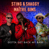 Gotta Get Back My Baby (with Shaggy, feat. Maître Gims) (Maitre Gims Version)