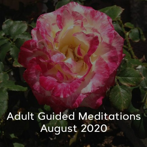 Adult Meditations - August 2020