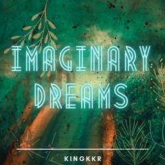 IMAGINARY DREAMS