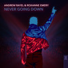 Download Andrew Rayel & Roxanne Emery - Never Going Down Mp3