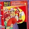 041 - Im Bann des Flamenco (Teil 25)