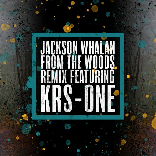 From the Woods (feat. KRS-One)[Remix]