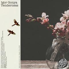 PREMIERE: Igor Gonya - Tenderness [Magpie]