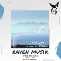 PREMIERE: Tom Pooks & Joy Kitikonti - New Dawn (Kolombo Remix) [Family Piknik]