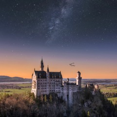Enter The Castle Sire