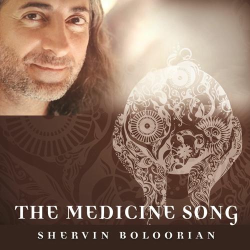 Shervin Boloorian - The Medicine Song (Lenny Fontana Remixes)