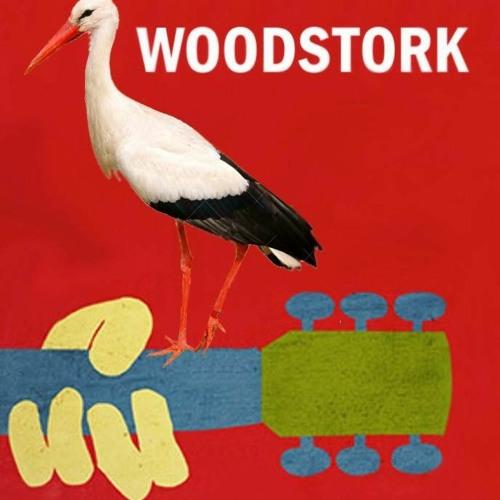 Woodstork Acoustic Trio