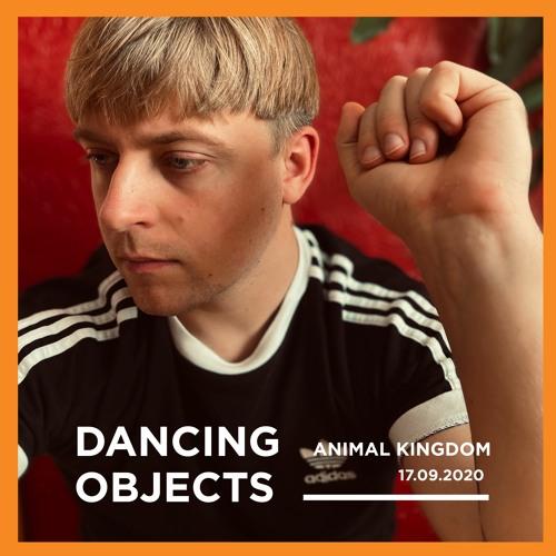 Dancing Objects'24    Animal Kingdom