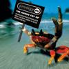 Firestarter (Alvin Risk Remix)