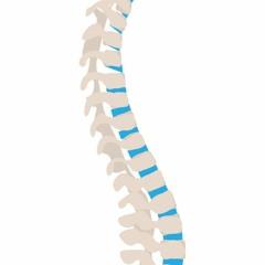 Minimally Invasive Spine Surgery Arizona
