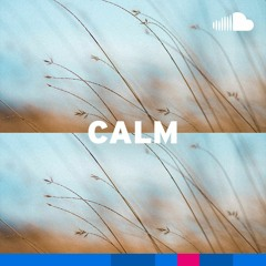 Anti-Anxiety Ambient: Calm