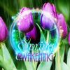 Spring Awakening (Bamboo Flute and Rain)