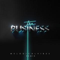 Tiesto - The Business (MelodicalVibes Remix Ft. NAJA)