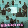 Download Rema - Ginger Me (Cover) Mp3