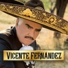 Download Vicente mix Mp3