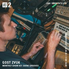 GOST ZVUK x NTS monthly show #27 w/Shine Grooves
