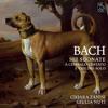 Violin Sonata No. 5 in F Minor, BWV 1018: III. Adagio