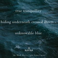 Hiding Underneath Unknowable Blue - Naviarhaiku325