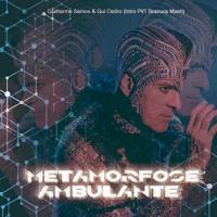 INTRO Ney Matogrosso - Metamorfose Ambulante (Gui Cedro e Guilherme Santos PVT)