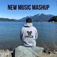 Dj Mick | New Song Bhangra Mashup | May Podcast