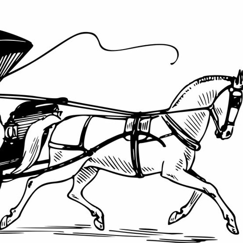 THE  POWERFUL HORSE WHIP