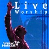 What Love Is This? (I Surrender) (Live)