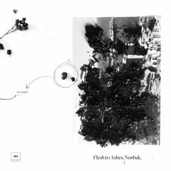 Premiere: Nørbak — Rune Value [Warm Up Recordings]