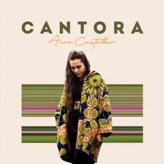 Cantora