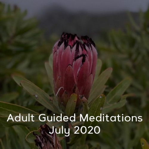 Adult Meditations - July 2020