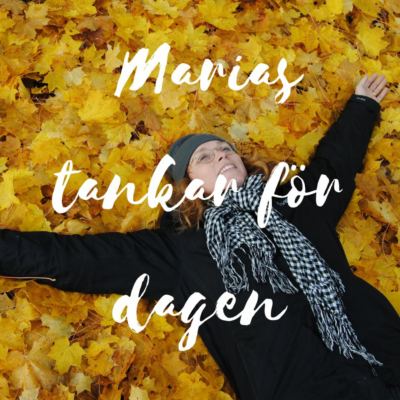 Marias tankar för dagen 42: Aktivist? Javisst!