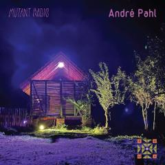 André Pahl at Polja Festival [9.09.2021]