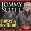The Rose of Kelvingrove