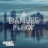 DANUBE FLOW (paulplus)