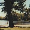 Download Summer Wine - Lee Hazlewood & Nancy Sinatra(cover) Mp3