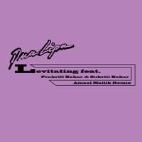 Levitating (feat. Prakriti Kakar & Sukriti Kakar) [Amaal Mallik Remix]