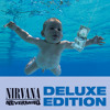 Something In The Way (Album Version)