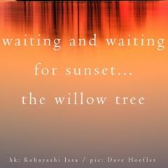 Naviarhaiku357 – Waiting And Waiting