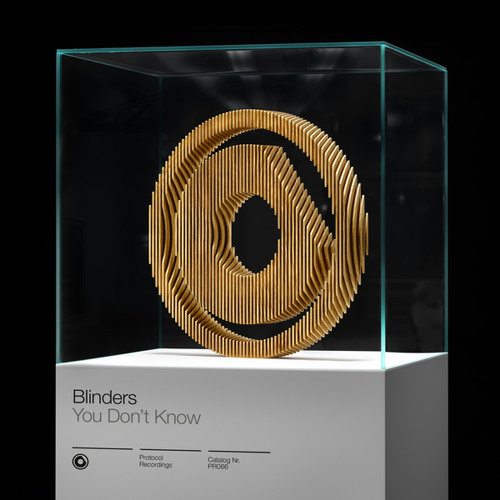Blinders - You Don't Know (Original Mix)