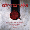 Slow Poke Music (Evolutions: Demos/Remixes/Re-records)